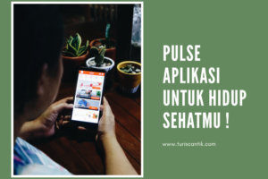 pulse aplikasi gaya hidup sehat